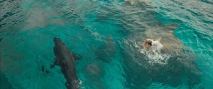the-shallows-img-1